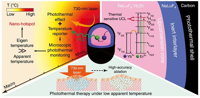 低温下 csUCNP@C 进行精确光热治疗的原理示意图
