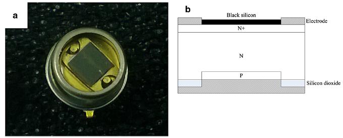 基于黑硅的 Si-PIN 探测器的真实图片及结构图