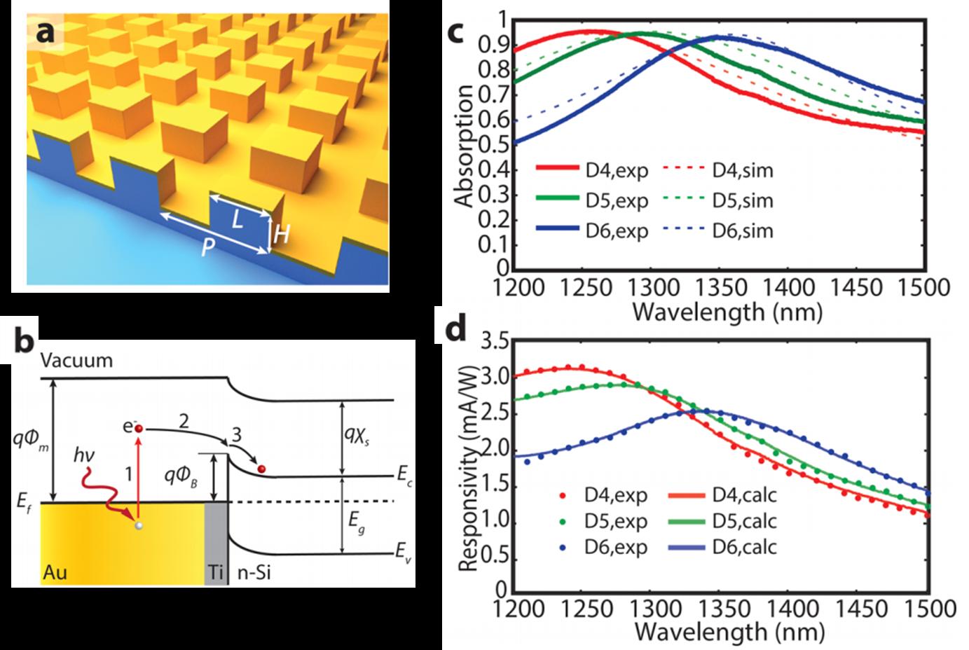 基于Au纳米阵列SPP的光电探测器件的光学及电学特性表征