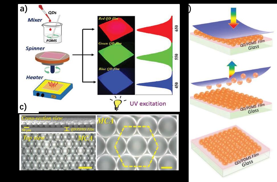 微球-空腔阵列包封的QD/PDMS复合膜合成